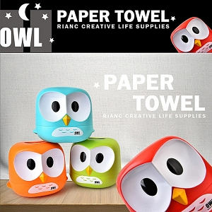 Owl Paper Towel Box