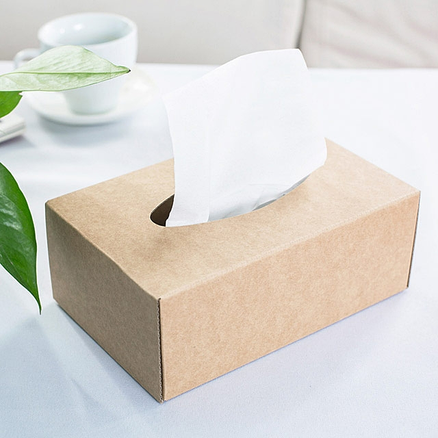DIY Kraft Paper Tissue Box
