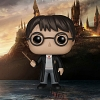 Funko POP Harry Potter - Harry Potter Action Figure