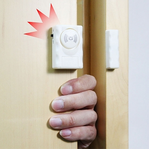 Window/Door Entry Alarm